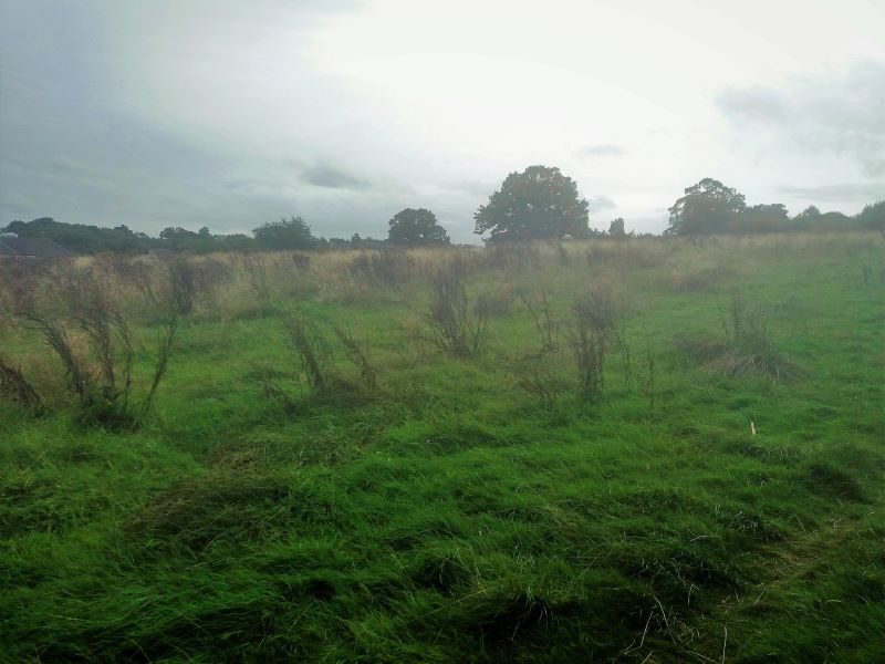 Land at Harrogate Road, Huby, Leeds, West Yorkshire, LS17 0EA