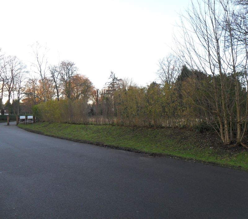 Land adjacent to Rose Cottage, Woodcote Lane, Purley, Surrey, CR8 3HB
