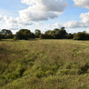 Land at Brook Farm, Brampton, Huntingdon, Cambridgeshire, PE28 4RN