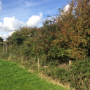 Land at Priory Road, St. Ives, Cambridgeshire, PE27 5BB