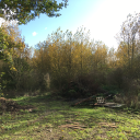 Land at Trapps Lane, off Church Lane, East Tuddenham, Dereham, Norfolk, NR20 3JW