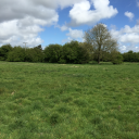7.52 acres (3.04 ha) Amenity Land, off Manor Road, Newton St. Faith, Norwich, Norfolk, NR10 3LG