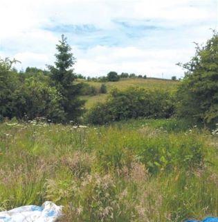 Llanelly Hill, Abergavenny, Gwent, NP7