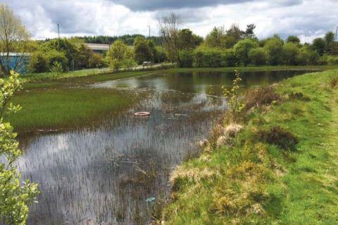 Ebbw Vale, Gwent, NP23