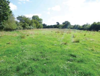 Property for auction in Dorset)