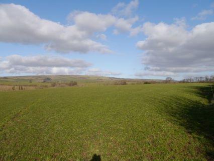 North Molton, South Molton, Devon, EX36